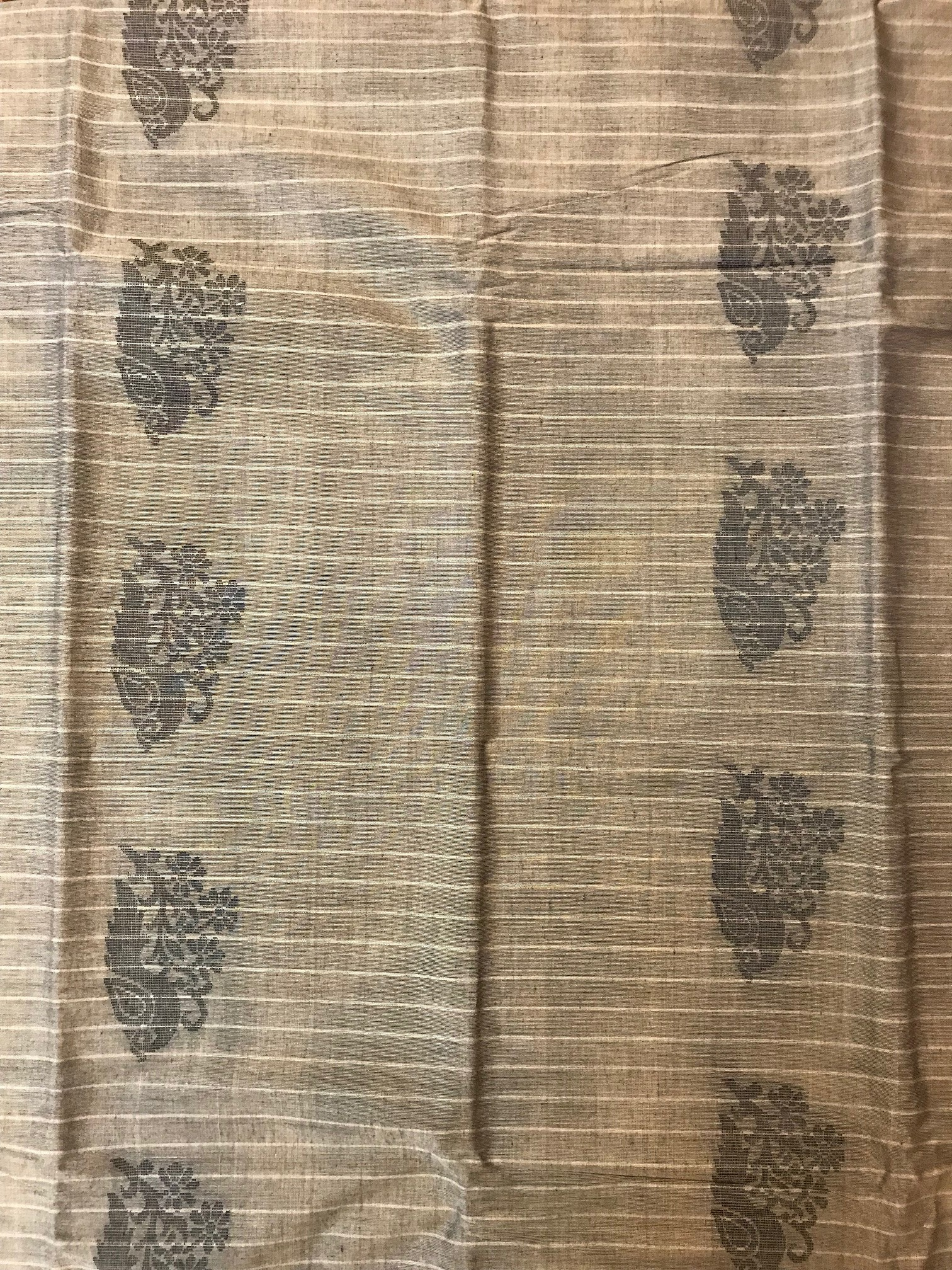 Taupe and Black Kanchi Cotton Saree (INDI-1001)